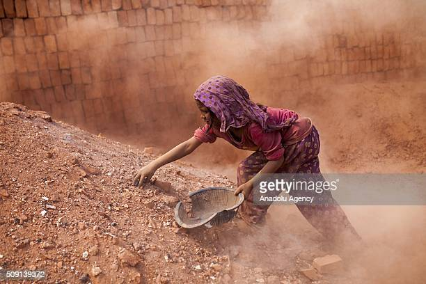 Child labors collect coal from dust near brick making field in Dhaka Bangladesh on February 09 2016 Despite of the hazardous effect of dust on health...