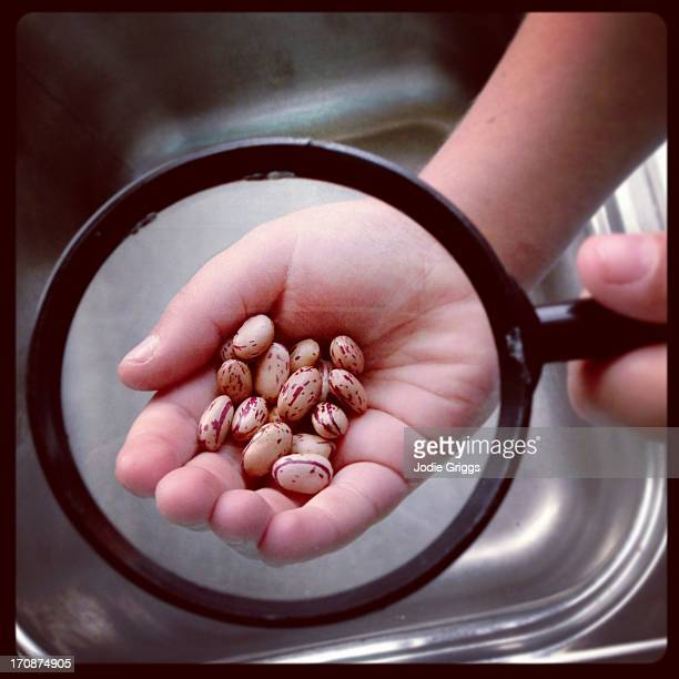 Child looking at beans with a magnifying glass