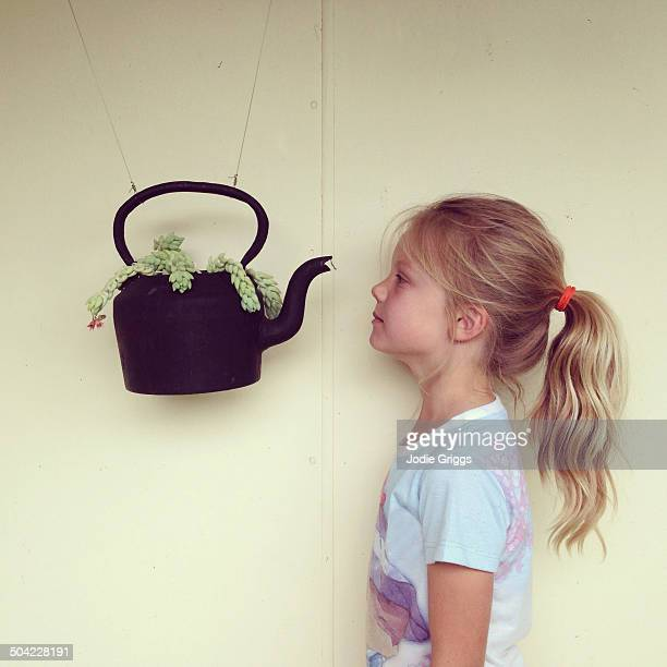 Child looking at plant growing in suspended teapot