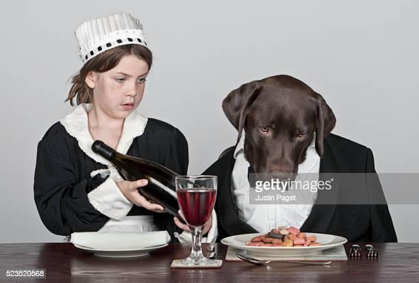 Child maid serving chocolate labrador master dinner