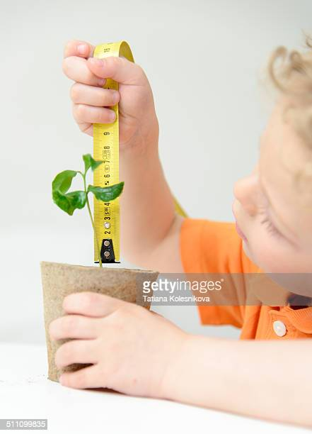 Child measuring a new plant.