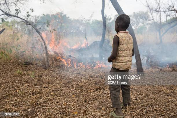 Child of former Lord's Resistance Army captive, Julius Peter, watches a fire started to clear land in Lologi, northern Uganda. Medics create...