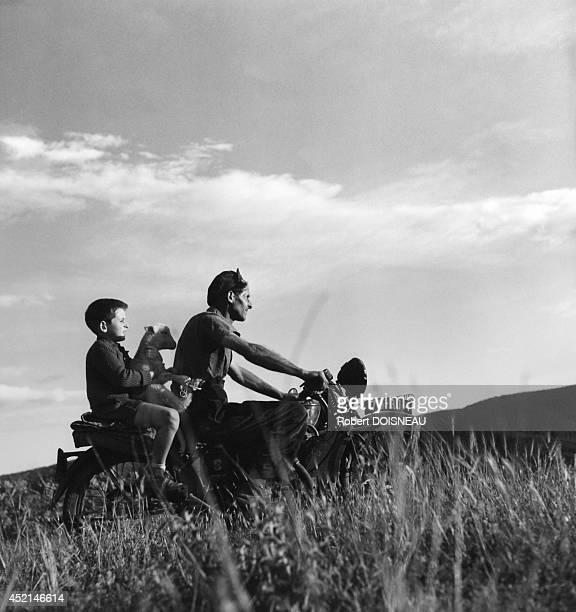 Child on the motorcycle of the shepherd during seasonal move to summer pastures near the Col de Valberg on June 25 1958 in Valberg France