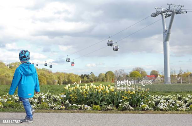 A child passes tulips growing at the IGA International Garden Exhibition on April 13 2017 in Berlin Germany The showcase of flora and horticultural...