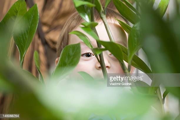 Child peeking behind plant