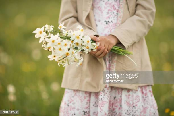 child picking narcissus flowers - narcissus mythological character stock photos and pictures