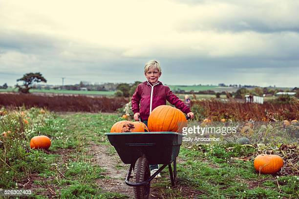 Child picking pumpkins at the farm