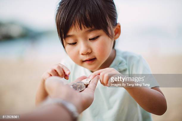 child picking seashells from dad's hand - curiosity stock pictures, royalty-free photos & images