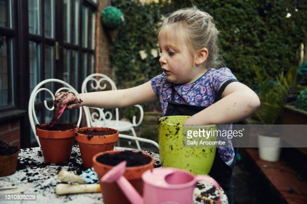 child planting seeds - sally anscombe stock pictures, royalty-free photos & images