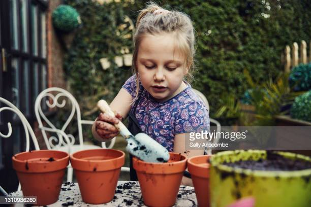 child planting seeds - plant part stock pictures, royalty-free photos & images