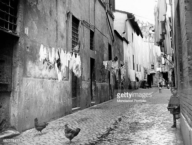 A child playing in a lane of Trastevere among chickens and hanged out washing Rome 1950s