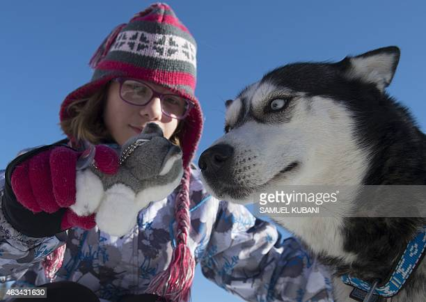 A child plays with a Siberian Husky before a sled race on February 14 2015 in ski center Kraliky during Visegrad Cup 2015 race near Banska Bystrica...