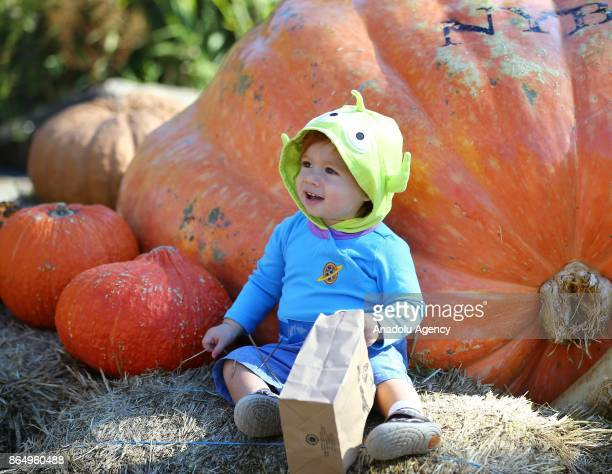 A child poses for a photo in front of the biggest pumpkin of 2017 ahead of the Halloween an annual holiday celebrated on October 31 at New York...