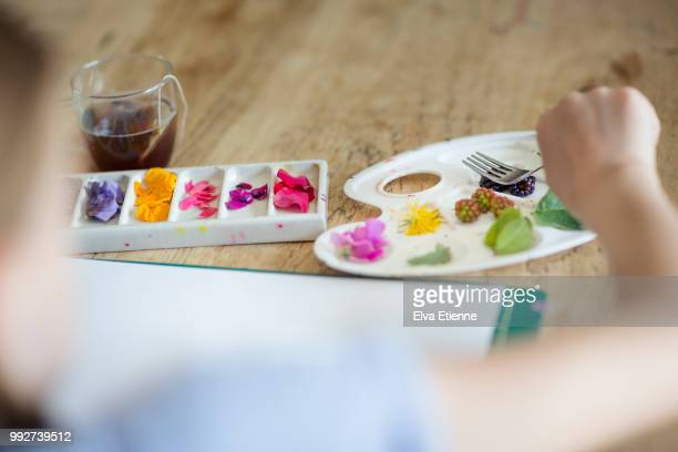 child preparing natural dyes from flower petals, leaves and berries - crushed leaves stock pictures, royalty-free photos & images