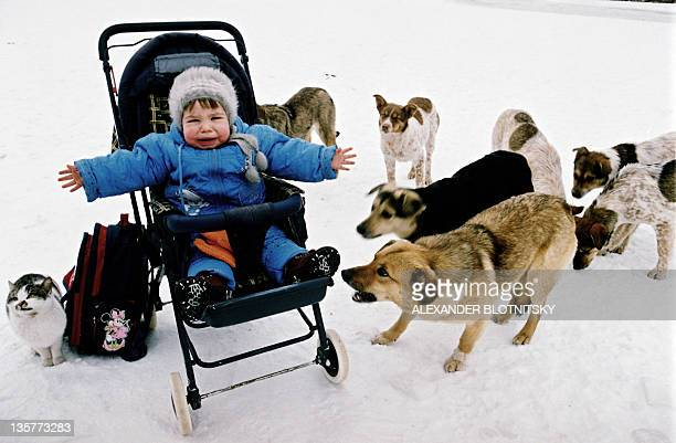 A child reacts as stray dogs bark next to her in the town of RostovonDon 25 January 2006 AFP PHOTO / ALEXANDER BLOTNITSKY