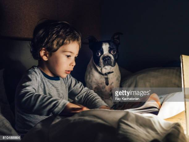 Child reading with boston terrier