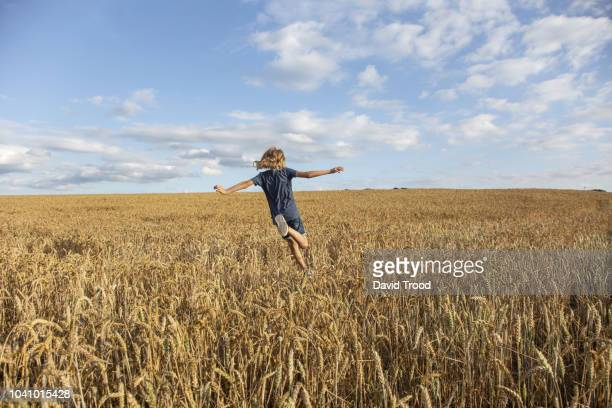 child running in a field of wheat - pre season photos et images de collection