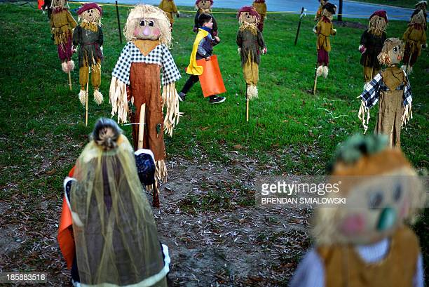 A child runs through scarecrows during Boo at the Zoo at the Smithsonian's National Zoo October 25 2013 in Washington DC Those who purchased tickets...
