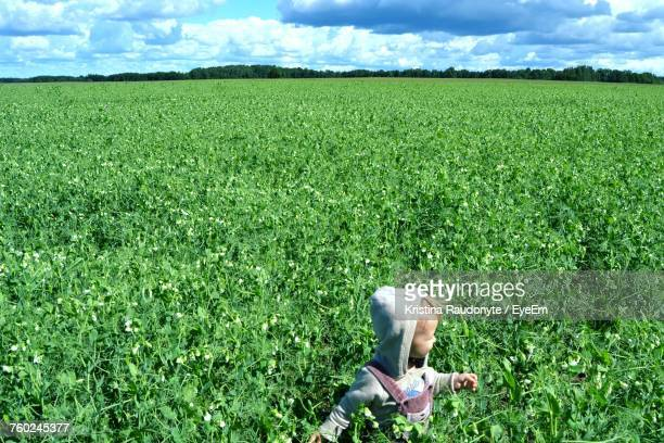 Child Standing Amidst Plants On Field During Sunny Day