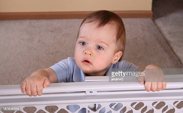 Child standing at baby gate