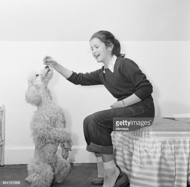 Child star Mandy Miller is pictured here at home on 8th May 1955