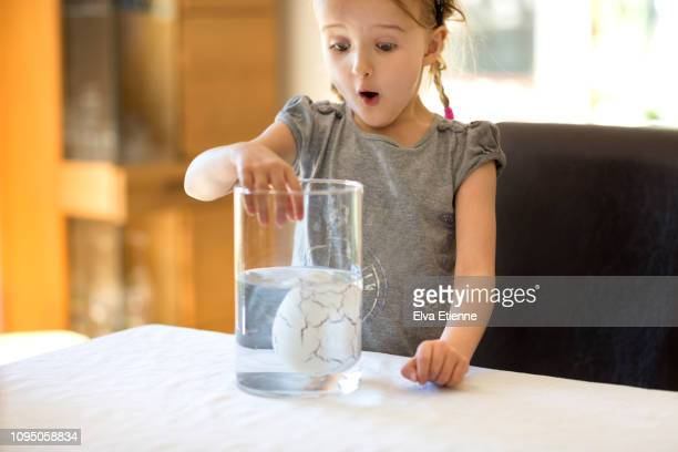 Child (6-7) surprised to see a large porous egg sinking in a beaker of water