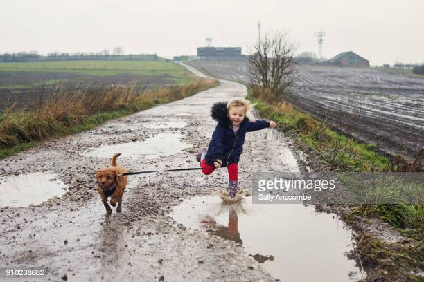 child walking a puppy dog - mud stock pictures, royalty-free photos & images