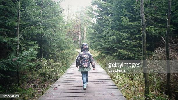 child walking alone along a forest path - baden württemberg stock photos and pictures