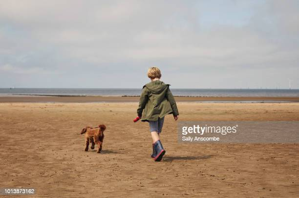 Child walking his pet dog on the beach