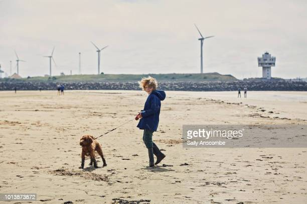 Child walking his pet puppy dog