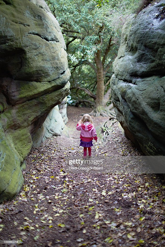 Child walking through the forest : Stock Photo