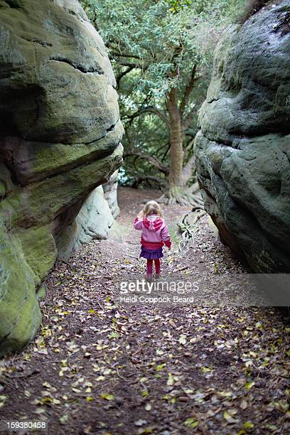 child walking through the forest - heidi coppock beard stockfoto's en -beelden