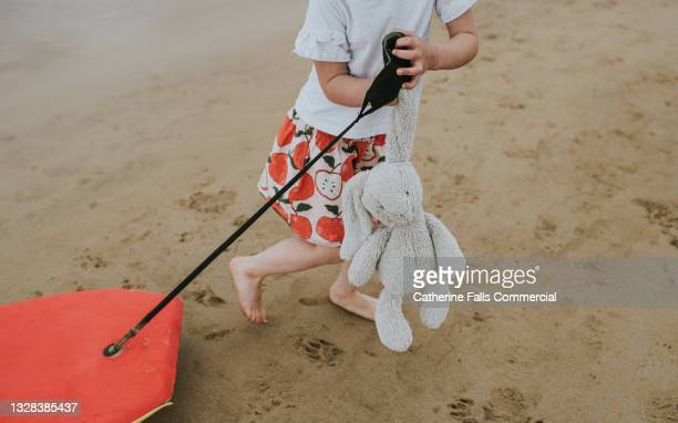 a child walks across a wet beach, dragging a bodyboard behind her while simultaneously clutching her stuffed toy bunny - teddy bear stock pictures, royalty-free photos & images