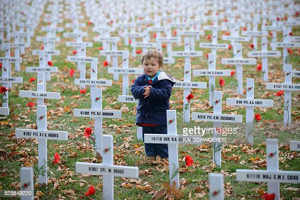 A child walks along white crosses on the lawn following the ANZAC Day Dawn Service at Cramner Square on April 25 2016 in Christchurch New Zealand In...