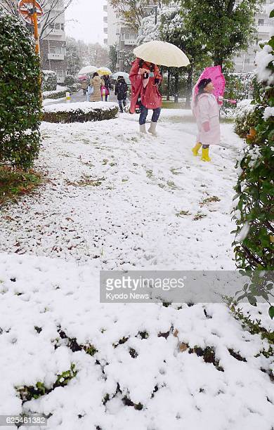 A child walks in the snow on the morning of Nov 24 in NishiTokyo Tokyo the day when the Japanese capital had snowfall in November for the first time...