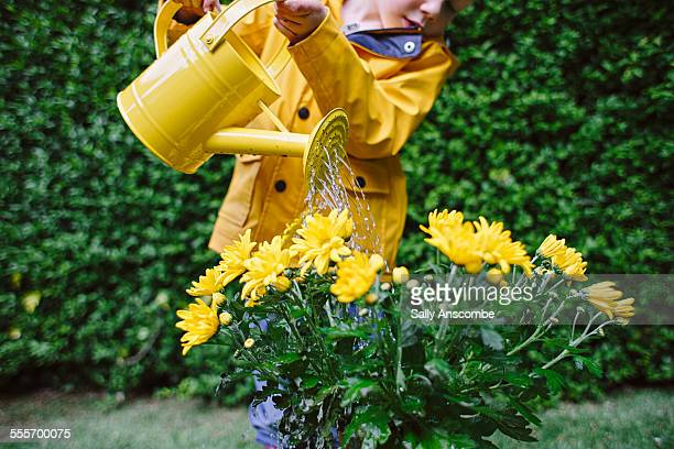 Child watering a a plant