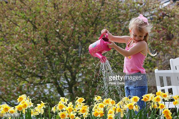 child watering flowers - daffodils stock pictures, royalty-free photos & images