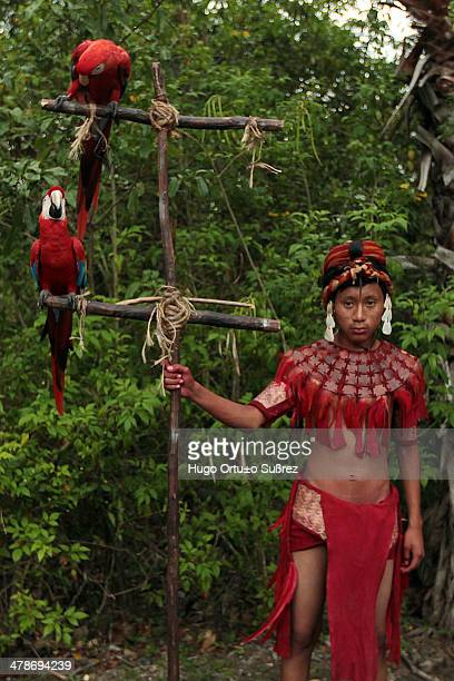 A child wearing a Mayan dress holding a wooden structure where a scarlet macaw perches A market prehispanic dances and offerings to the goddess...