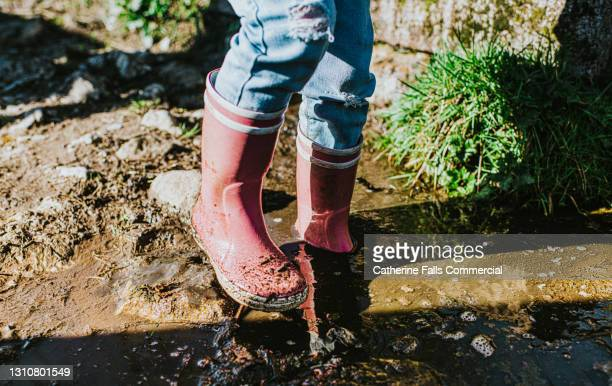 child wearing pink wellies and wading through a deep muddy puddle - waders stock pictures, royalty-free photos & images