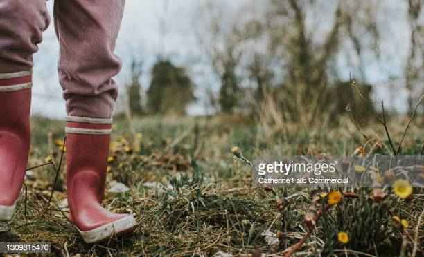 child wearing pink wellies stamps in a flat field of weeds - waders stock pictures, royalty-free photos & images