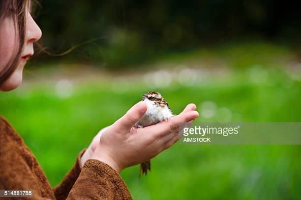 child with a bird in hands - red stockfoto's en -beelden