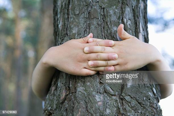 Child with arms around tree trunk
