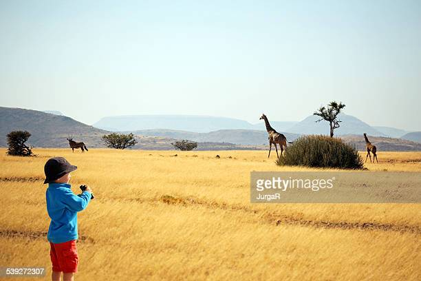 Child with binoculars watching animals on safari in Africa