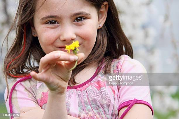 child with dandelion - cappi thompson stock pictures, royalty-free photos & images