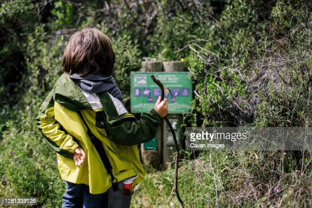 child with stick looking at park sign in trail in nature - petaluma stock pictures, royalty-free photos & images