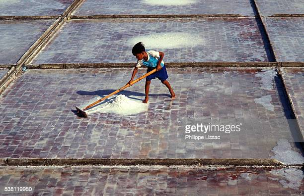 Child Working in Salt Pan