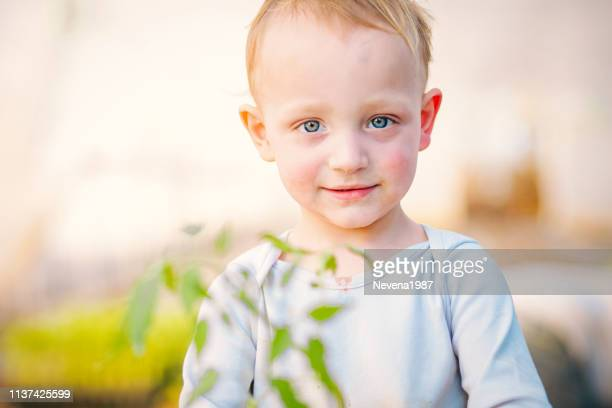 childhood as pure as nature - menino loiro olhos azuis imagens e fotografias de stock
