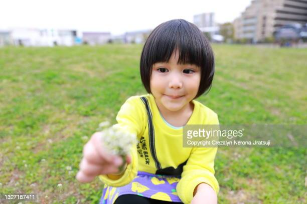childhood lifestyle girl picking flowers on grassfield - saitama prefecture stock pictures, royalty-free photos & images