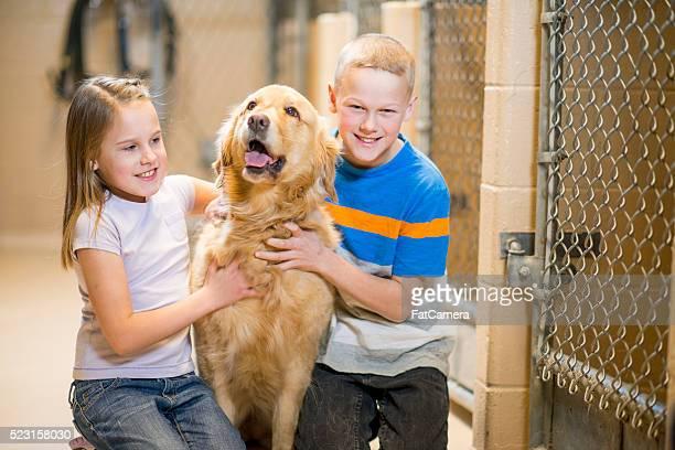 Children Adopting a Dog
