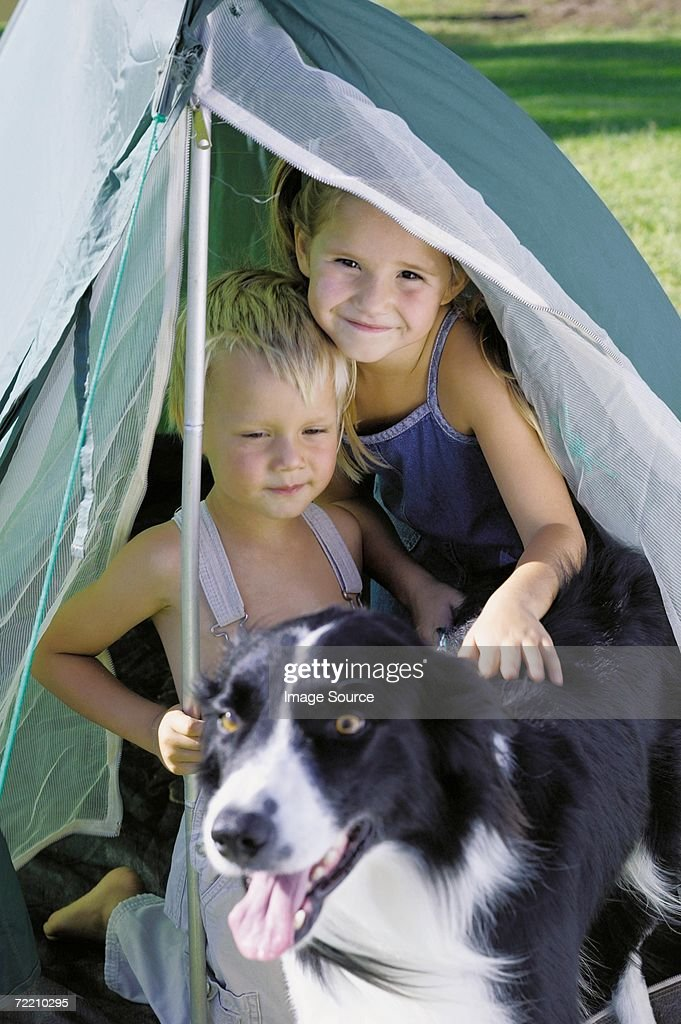 Children and dog camping : Stock Photo